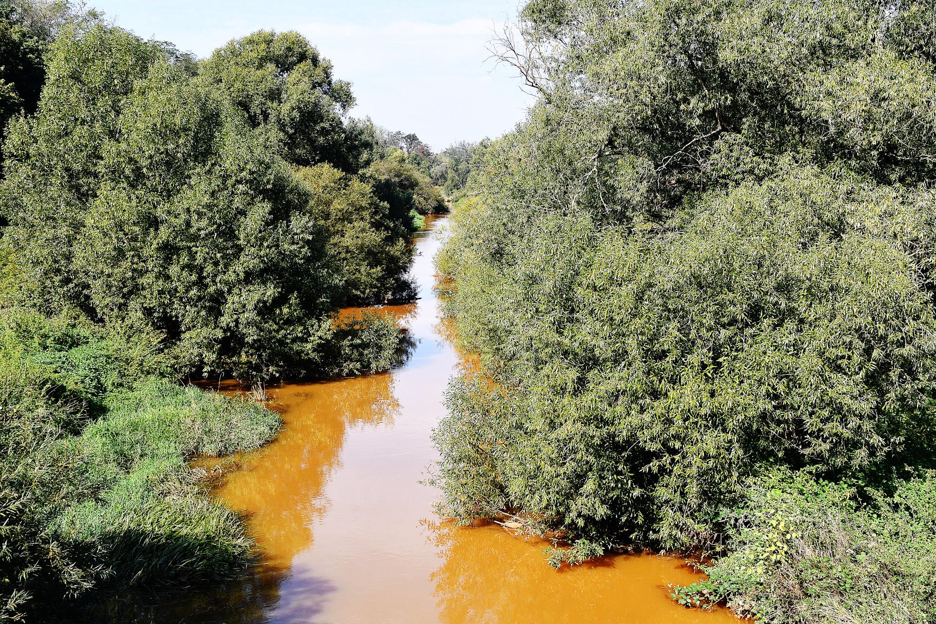 Fluss Pleiße im Bereich der Kippe Witznitz
